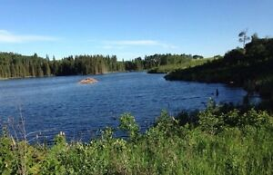 2 1/2 acre Lake Front serviced lot: Seller Financing