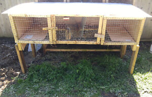 Rabbit hutches, cages