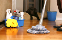 Experienced Female House Cleaner Needed ASAP! $16 - 17/hr CASH!