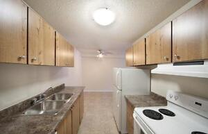 1/2 Off Your First Month's Rent - Close to Southgate Mall!