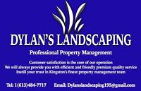 Spring cleanup lawn mowing cutting early booking specials