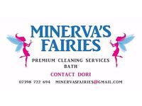 Premium Domestic Cleaning Services