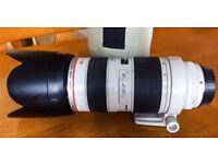 Canon 70-200mm f/2.8 L Series EF USM Lens