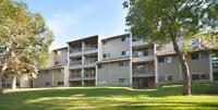 Suites Available Nearby Rivervalley, Parks and Walking Trails!