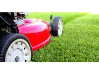 Grass Cutting , From £9.99 Gutter Cleaning , Pressure Washing