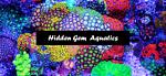 Hidden Gem Aquatics