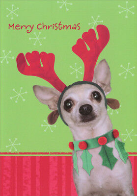 Chihuahua with Style Dog Image Arts Christmas Card