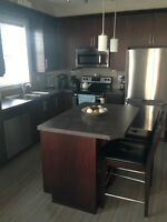 New condo VERY NICE- THE ION AMBLESIDE  - Windermere