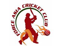 Cricket Player Needed