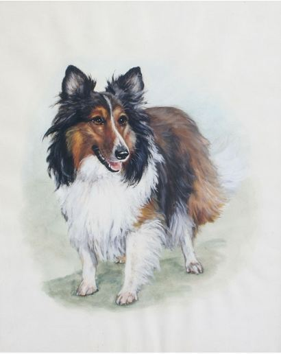 Gorgeous Sheltie Gouache Watercolor Framed