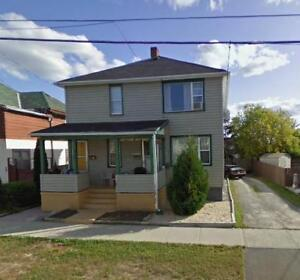 Bright 2 Bedroom Lower Level Apartment For March 1st. - 800+Hyd