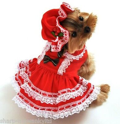 Haustier Hund Katze Miss Santa Weihnachtsgeschenk Kostüm Kleid Outfit Kleidung