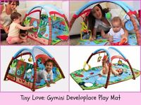 Tiny Love Woodland Play Mat