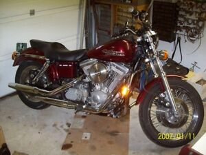 Harley FXD seat Wanted