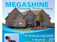 MEGASHINE PROFESSIONAL WINDOW CLEANING SERVICE
