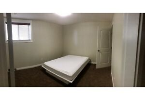 Basement suite for rent (single occupant only)