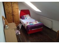 Spacious loft room ( prefer female only)