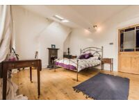 Large, bright beautiful room in Victorian terrace