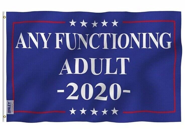 Any Functioning Adult 2020 Election Flag (3x5')