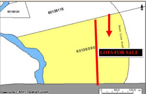 Pick your own parcel of this 20 Acre Lot ONLY $15,000