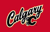 Calgary Flames vs Dallas Stars - Dec 1, 2015 - Sec 226
