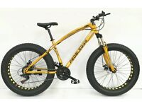 PedalEase BIGCAT Fat Bike, Large Size Brand New in Box