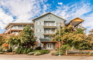 A303 1118 Riverside Ave, Sicamous - Prime Watefront Condo!