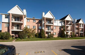 Move in before the holidays! Renovated 3 bedroom condo London Ontario image 1