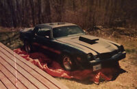 1980 Chevrolet Camaro Coupe (2 door)