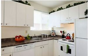 2 Bedroom Townhouse - Great Location on Southdale- Available Dec London Ontario image 3