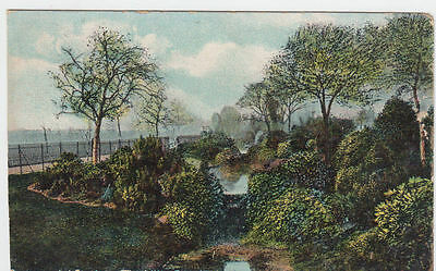VINTAGE POSTCARD OF  ORNAMENTAL GARDENS THE LITTLE SCRUBBS UNPOSTED