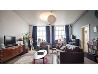 Lovely room in shared Stoke Newington Loft