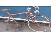 Shed find, vintage Raleigh road bike. Racer, touring bike.