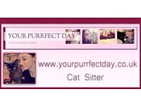 Registered Cat Sitter ( London) - Your Purrfect Day. London