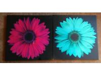 Two square flowery canvas prints