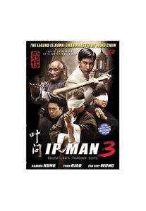 Finding Donnie Yen Movies to Go Along With Ip Man 3