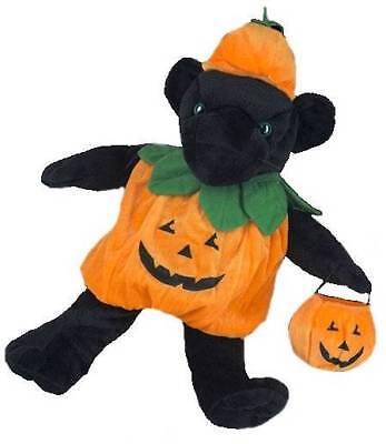 Calabaza Jack - o - Linterna Disfraz de Halloween For 16