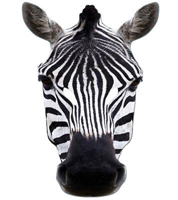 Zebra Animal 2D Card Party Face Mask Fancy Dress Up Zoo Safari Theme