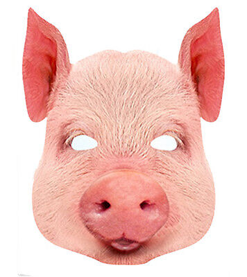 Schwein Tier 2D Karten Party Gesichtsmaske Kostüm Farm Thema