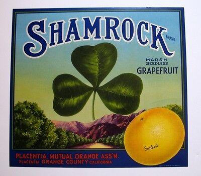 1940s Shamrock 3 Leaf Clover Sunkist Grapefruit Crate Label