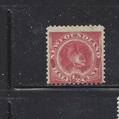 CANADA - NEWFOUNDLAND - 56 - USED - 1887 - NEWFOUNDLAND DOG