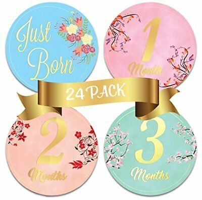24 Newborn Baby Floral Milestone Stickers  Celebrate 0 12 Months And More