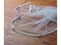 """Arleta"" Single Tier Beaded Wedding Veil by Joyce Jackson"