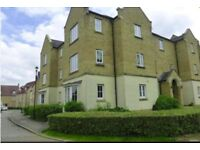 1 BED Apartment for rent in kingsmead 775 pm