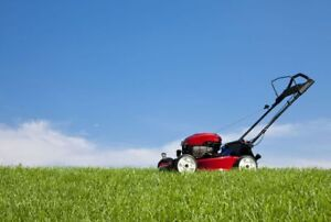 Lawn mowing/Care starting at $20