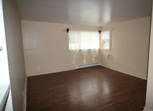 *** Quiet Bachelor Apartment *** Spacious and Bright ***