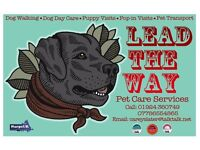 Lead the Way Pet Services Fully insured, CRB & Pet First Aid certificates
