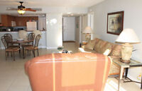 Beach Front 1 Bedroom Between Clearwater and St. Petes (2105)