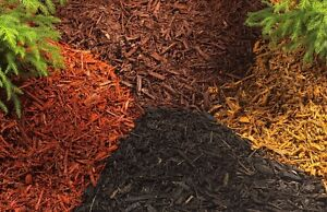 Naturally Colored Mulch 30$ per yard Best price in Kingston