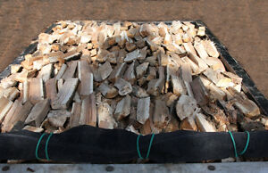 $255 DRY OR GREEN 210-4829 THE FIREWOOD PLACE